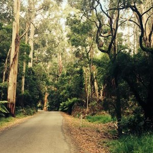 Erskine Falls Road